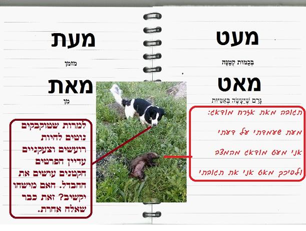 מדריך קצר בעברית לטוקבקיסט הממוצע: חלק א'